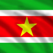 Flag of Suriname — Stock Photo #10628139