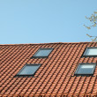 Stock Photo: Roof and windows