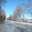 Stock Photo: Winter way, flood