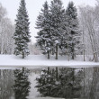 Winter — Stock Photo #10475074