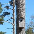 Nesting box — Stock Photo #10576250