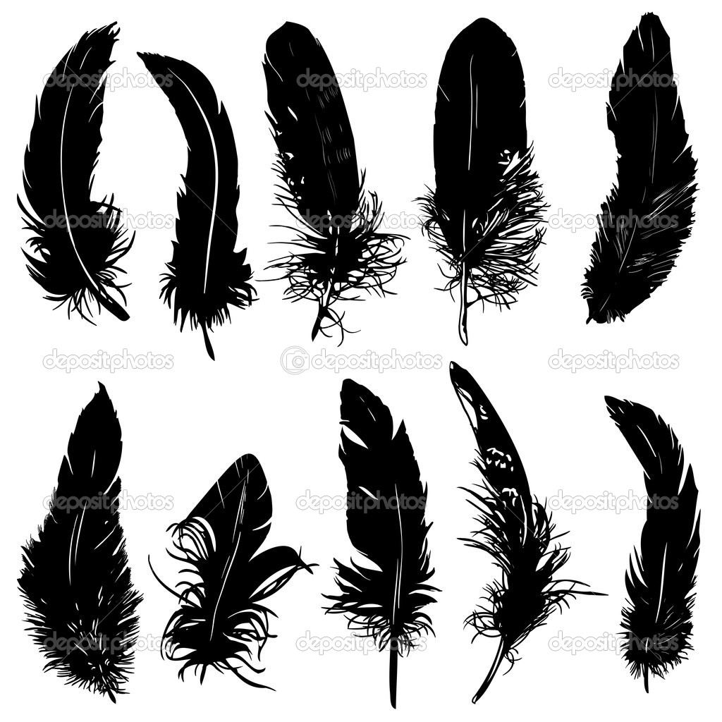 Feathers silhouette collection. Isolated. — Stock Vector #9232592