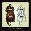Capitals and initials in the rococo style - Stock Vector