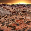 Valley of Fire National Park — Stock Photo