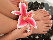 Spa. Pedicured feet, and manicured hands — Stock Photo