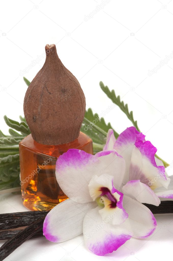 Vanilla massage oil with orchid, lavender and vanilla pods — Stock Photo #9037208