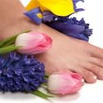 Pedicured feet — Stock Photo #9279120