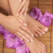 Pedicure Manicure Spa — Stock Photo