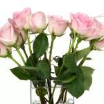 Rose Bouquet — Stock Photo