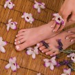 Pedicured feet, manicured hand and orchids — Stock Photo #9509106