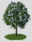 Money tree, thousand rubbles bills — Stock Photo