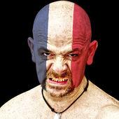法国体育迷 — 图库照片