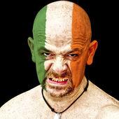 爱尔兰体育迷 — 图库照片