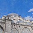 Stockfoto: SuleimMosque 11