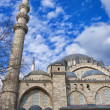 Stock Photo: SuleimMosque 16