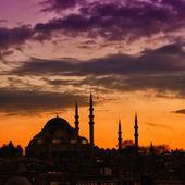 Suleiman Mosque 13 — Stock Photo