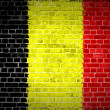 Brick Wall Belgium — Stock Photo