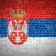 Brick Wall Serbia — Stock Photo