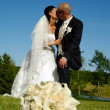 Wedding couple kissing — Stock Photo #8309143