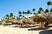 Parasols on beach — Stockfoto
