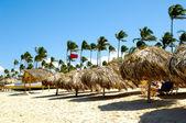 Parasols on beach — Stock Photo