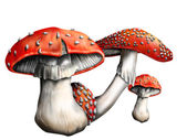 Magic mushroom — Stock Photo