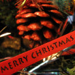 Merry Christmas — Stock fotografie #8232227