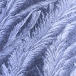 Abstract frost pattern — Stock Photo