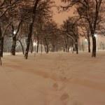 winternacht — Stockfoto