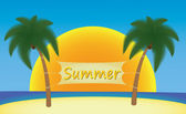 Summer banner hanging on palm trees — Stock Vector
