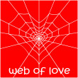 Web in form of heart and spider. — Stock Vector #8896740