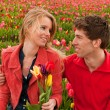 Happy young couple in Dutch flower fields — Foto de Stock