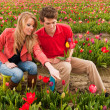 Young couple in Dutch flower fields - Stockfoto