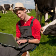 Young farmer with laptop in field with cows — Foto de Stock