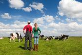 Typisch hollands landschap met boer paar en koeien — Stockfoto