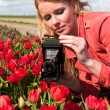 Dutch blond girl with old photo camera in field with tulips - Stock Photo