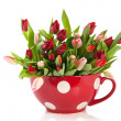 Big cup of tulips — Stock Photo #8632837