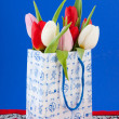 Royalty-Free Stock Photo: Dutch souvenir bag with tulips