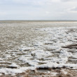 Stock Photo: Drifting ice in sea