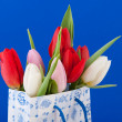 Dutch souvenir bag with tulips — Stock Photo