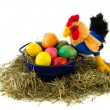 Blue bucket colorful easter eggs and chicken — Stock Photo