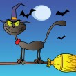 Black Cat Which Fly A Broom In Night - Stock Photo