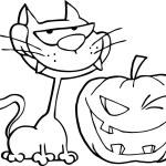 Cat And Winking Halloween Jackolantern Pumpkin — Stock Photo #8244557
