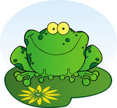 Happy Frog On A Lilypad — Stock Photo