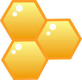 Honey Combs In A Hive — Stock Photo