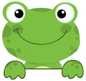 Frog Smiling Over A Sign Board — Stock Photo