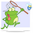 Hungry Frog Chasing Fly With A Net — Stock Photo