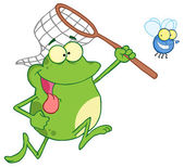 Frog Chasing Fly With A Net — Stock Photo