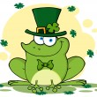 Happy Leprechaun Frog With Background — Stock Photo