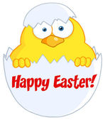 Happy Easter Chick In A Shell — Stock Photo